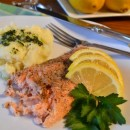 2-29-12 - Salmon