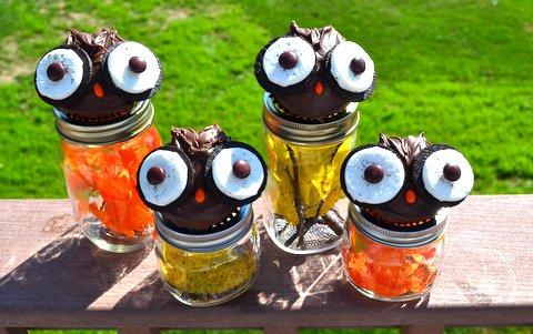 cupcakes, owl, fall
